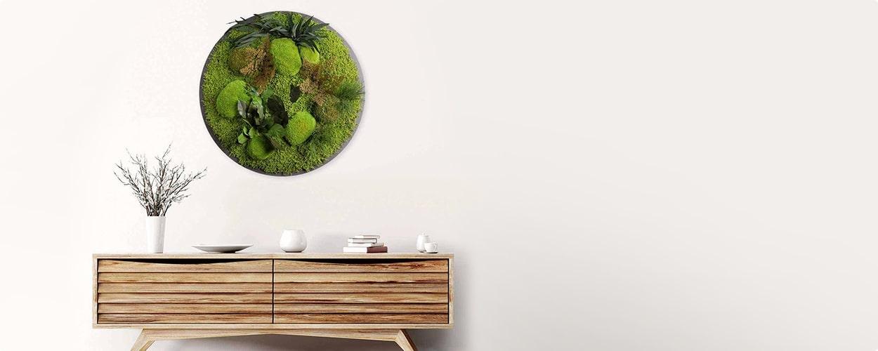 Pflanzenbild rund