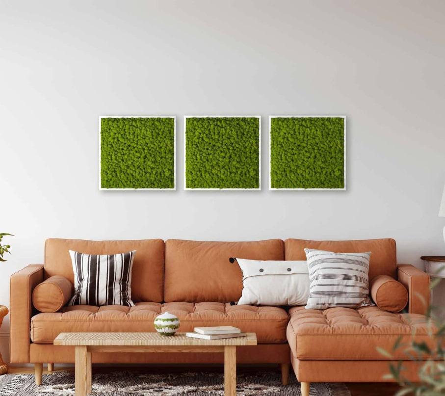 Bequem vom Sofa: Moosbilder im Onlineshop