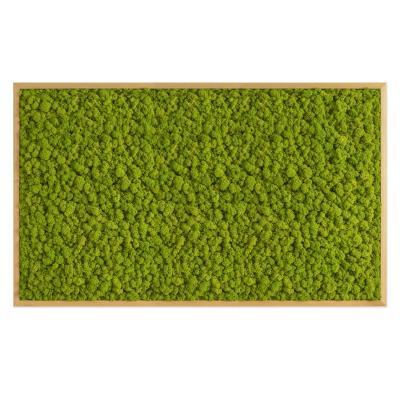 Moosbild mit Islandmoos - 100 x 60 cm - Holzrahmen Eiche geölt