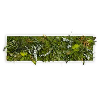"""Moosbild """"Dschungel"""" - 140 x 40 cm - Holzrahmen weiß lackiert"""
