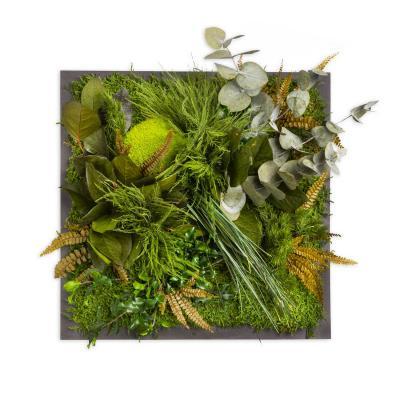 """Moosbild """"Dschungel"""" - 35 x 35 cm - Holzfaserplatte anthrazit"""