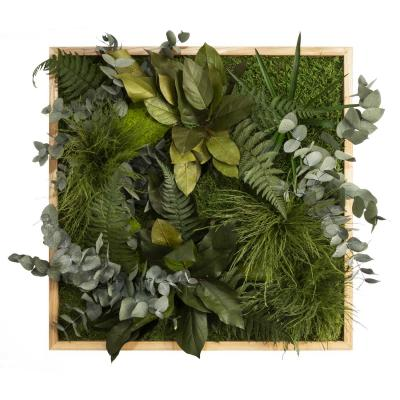 """Moosbild """"Dschungel"""" - 55 x 55 cm"""
