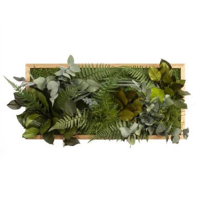 """Moosbild """"Dschungel"""" - 57 x 27 cm - Holzrahmen Eiche geölt"""
