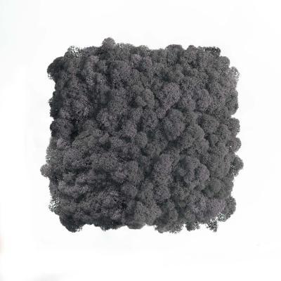 Moos Wandverkleidung - Amalia - 25 x 25 cm - grau