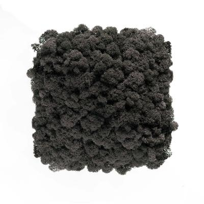 Moos Wandverkleidung - Amalia - 25 x 25 cm - schwarz
