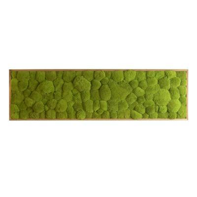Moosbild mit Kugelmoos - 140 x 40 cm - Holzrahmen Eiche geölt