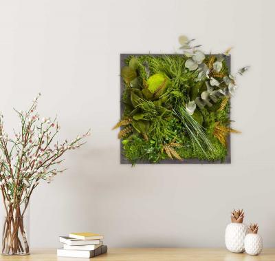"""Moosbild """"Dschungel"""" - 35 x 35 cm"""