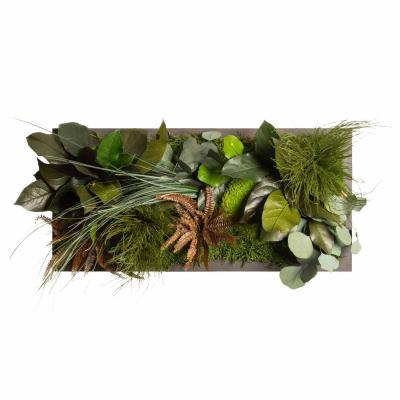 """Moosbild """"Dschungel"""" - 57 x 27 cm - Holzfaserplatte anthrazit"""