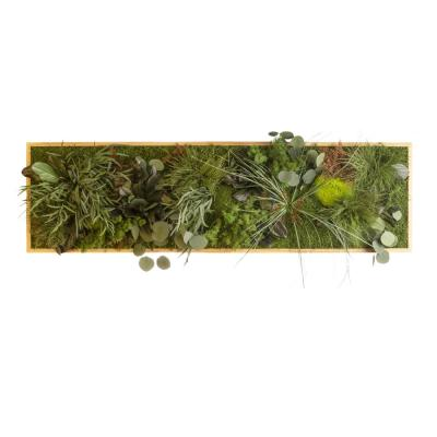 """Moosbild """"Dschungel"""" - 140 x 40 cm - Holzrahmen Eiche geölt"""
