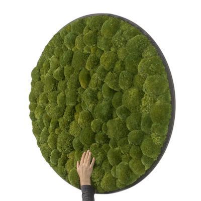 Rundes Gigant Moosbild Ø 118 cm Kugelmoos in Dunkelgrün auf Holzfaserplatte Anthrazit
