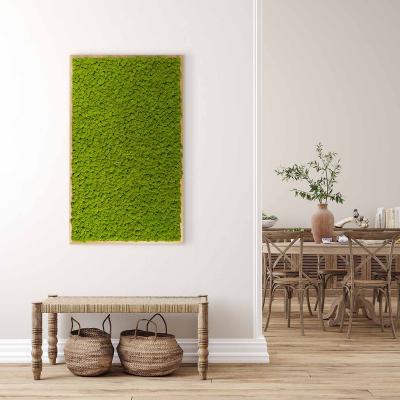Moosbild mit Islandmoos - 100 x 60 cm