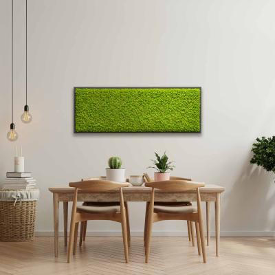 Moosbild mit Islandmoos - 140 x 40 cm