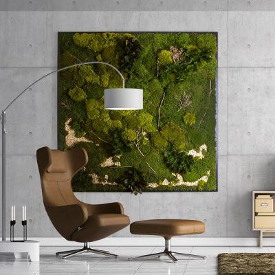 Moosbild Gigant Plateau mit versch. Moosen - 200 x 200 cm Pflanzen & Moos Mix auf Holzfaserplatte anthrazit