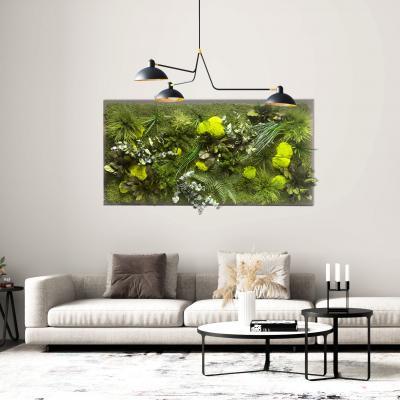 Moosbild Gigant Dschungel auf Holzfaserplatte anthrazit
