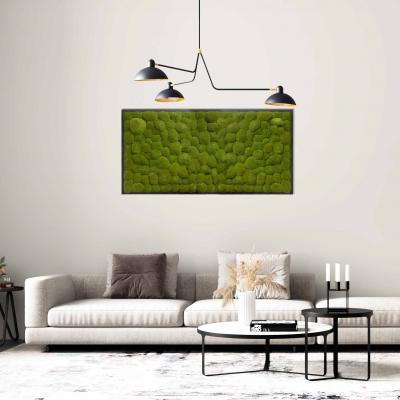 Moosbild Gigant Kugelmoos 150 x 75 cm auf Holzfaserplatte anthrazit