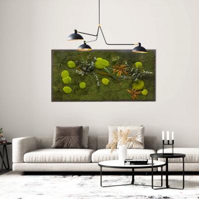 Moosbild Gigant Pflanze auf Holzfaserplatte anthrazit