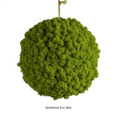 Moosballs mit Islandmoos - Apfelgrün - 50 cm Durchmesser