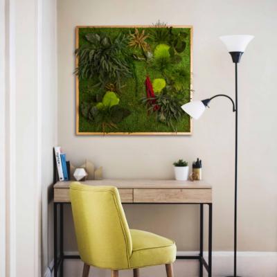 "Moosbild ""Pflanze"" - 80 x 80 cm"