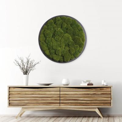 Moosbild ´Rund´ Kugelmoos Dunkelgrün Ø 70cm auf Holzfaserplatte anthrazit