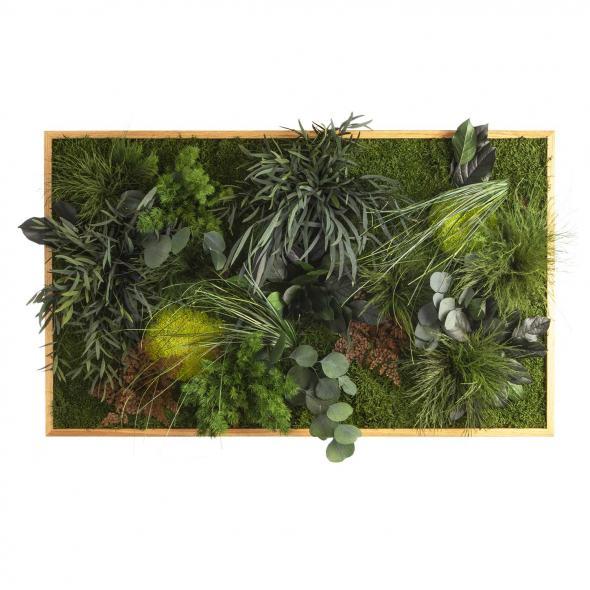"""Moosbild """"Dschungel"""" - 100 x 60 cm - Holzrahmen Eiche geölt"""