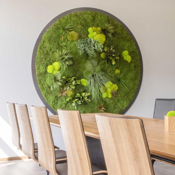 Moosbild Gigant Rund Nature Eye London No. 3 Ø 200cm - Pflanze auf Holzfaserplatte schwarz lackiert matt